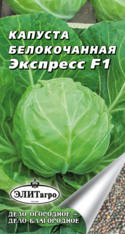 Семена Капуста б/к Экспресс F1, ранняя