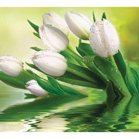 Тюльпаны 294x260 см