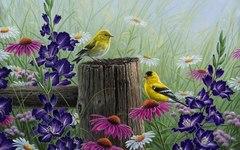 Картина раскраска по номерам 30x40 Птицы на деревянном заборе