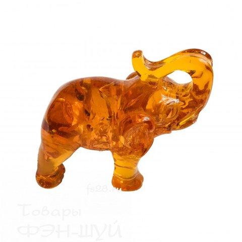 Cлон из янтаря средний