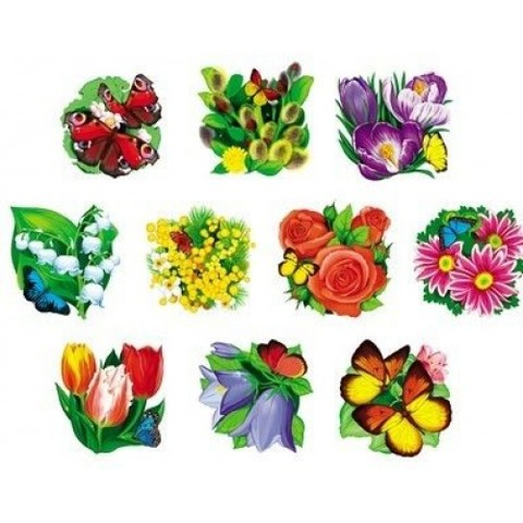 Цветы - набор оформительский на скотче
