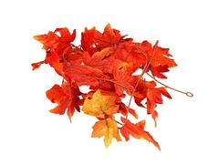 Декоративная гирлянда Яркие листья