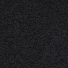 Искусственная кожа Lira eсo black (Лира эко блэк)