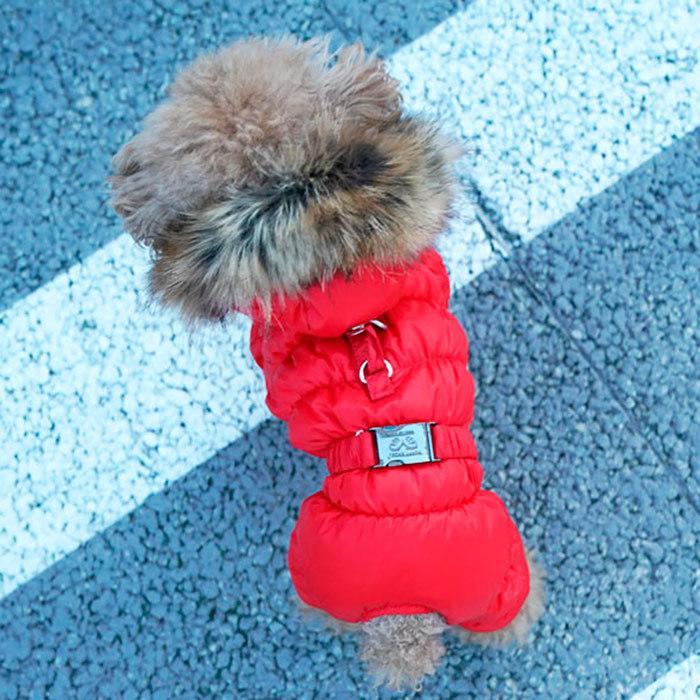 Зимние комбинезоны для собак
