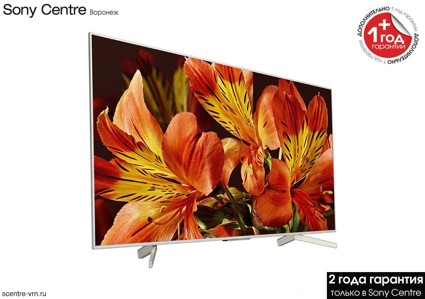 Телевизор Sony KD-49XF8577 купить в Sony Centre Воронеж