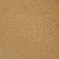 Искусственная кожа Art-Vision (Арт-Вижн) 156