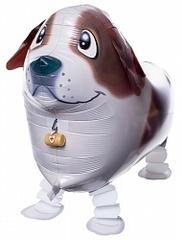 "Ходячий шар ""Коричневая собака"""