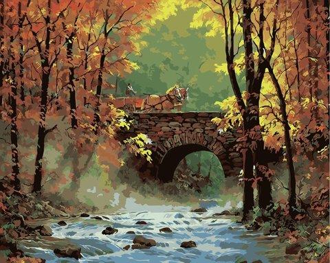 Картина раскраска по номерам 50x65 Осенний мост