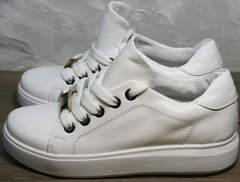 Модные женские кеды Molly shoes 557 Whate