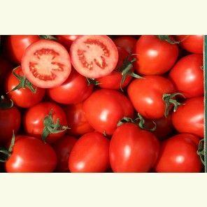 Томат Колибри F1 семена томата индетерминантного (Clause / Клос) КОЛИБРИ_F1_1_семена_овощей_оптом.jpg