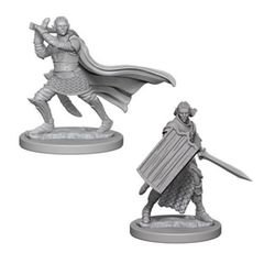Pathfinder Deep Cuts Unpainted Miniatures - Elf Male Paladin