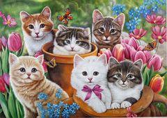 Картина раскраска по номерам 40x50 Милые котята