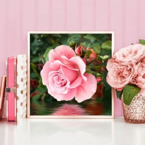 Картина стразами (набор) Роза у воды. 25х25 см.
