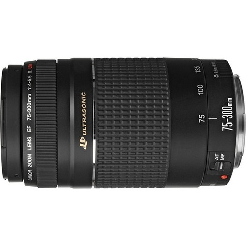 Объектив Canon EF 75-300mm f/4-5.6 III USM Black для Canon