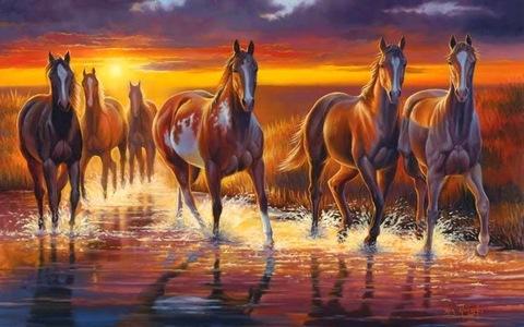Картина раскраска по номерам 50x65 Лошади идут по реке