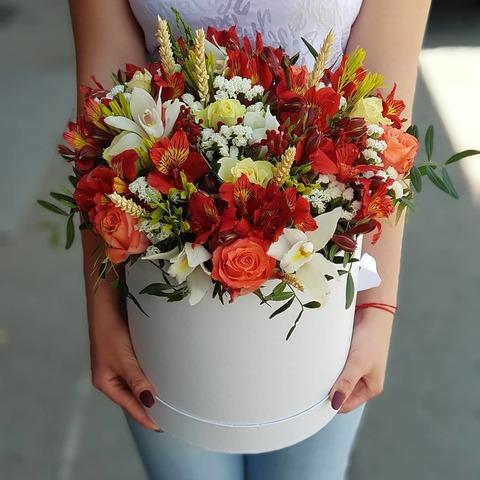 Коробка с микс цветами
