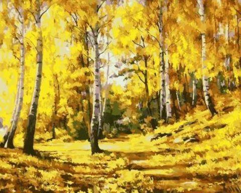 Картина раскраска по номерам 50x65 Березовая роща осенью