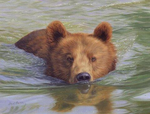 Картина раскраска по номерам 50x65 Медведь плывет