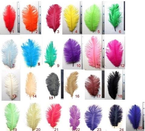 Перья страуса  декоративные  20-25 см.  (цена за 1 шт.) (выбрать цвет)