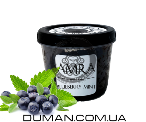 Табак Amra Blueberry Mint (Амра Черника мята) |Moon 25г