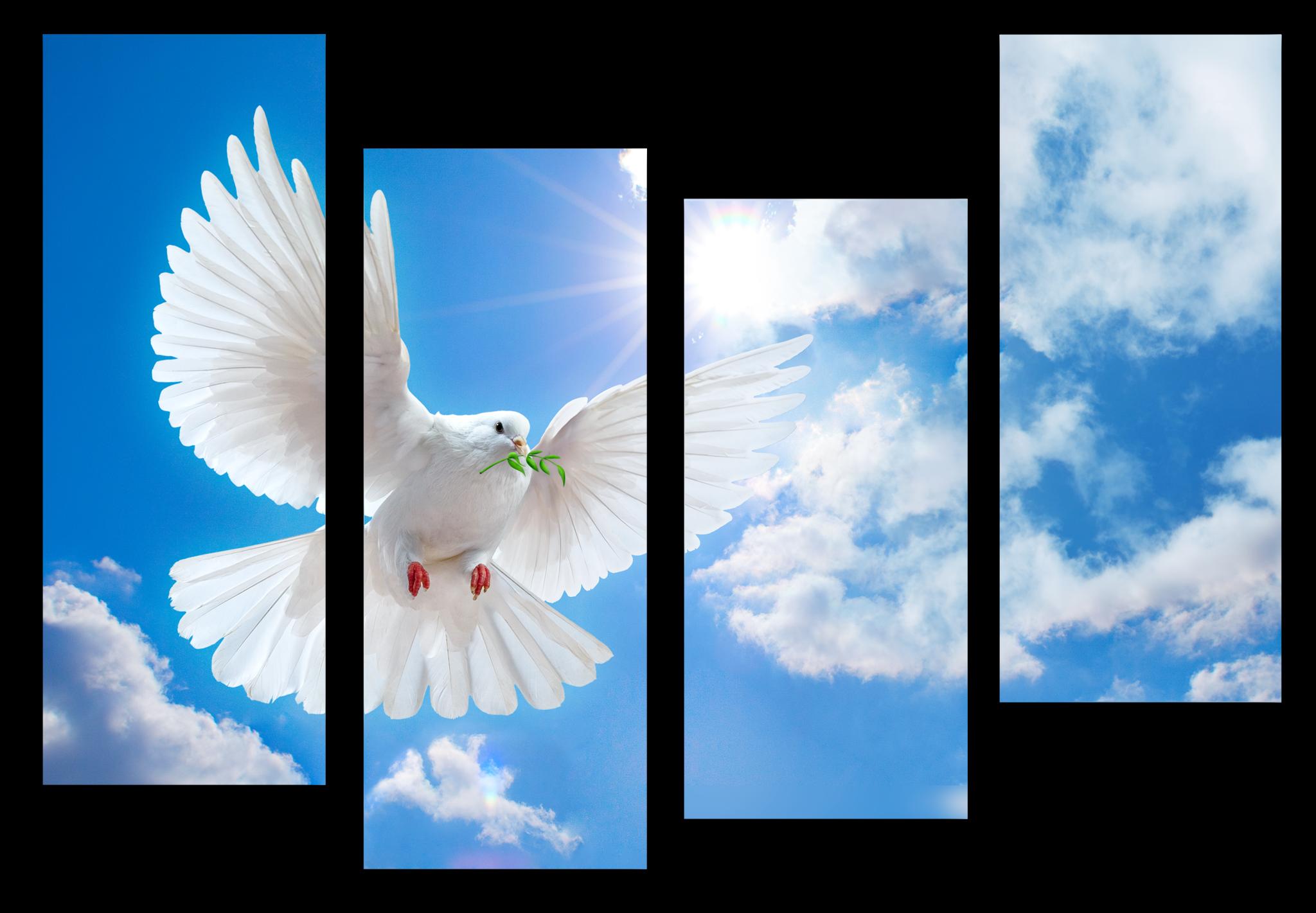 "Животные Модульная картина ""Белый голубь"" М1061_M_загибы_100х74.png"