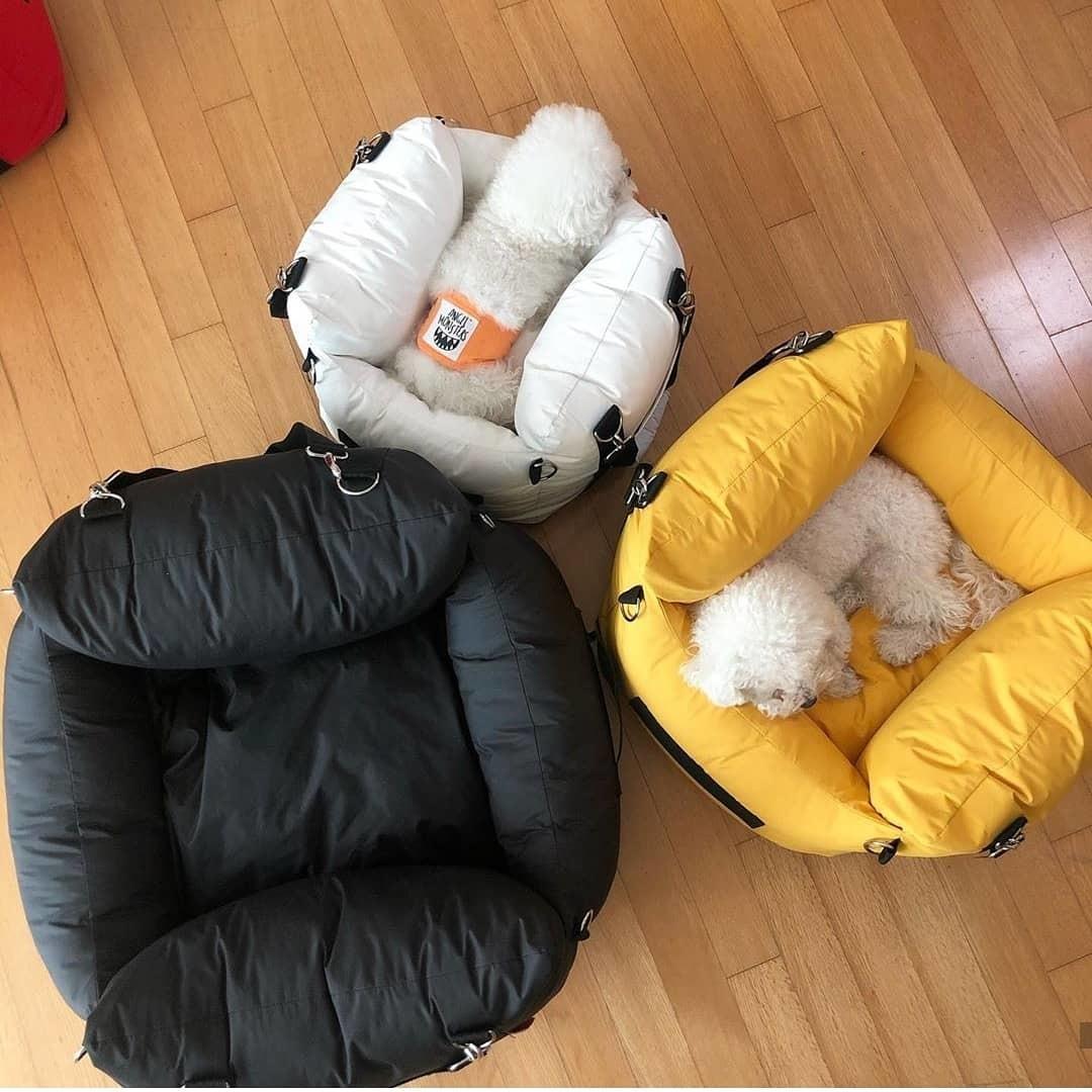Автопереноски для маленьких собак