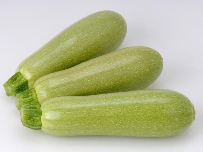 Кабачок Сама F1 семена кабачка (Sakata / Саката) САМА_F1_семена_овощей_оптом.jpg