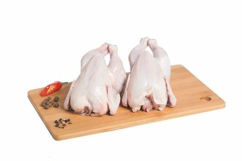 Цыплята корнишоны 0.4