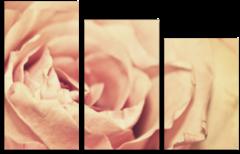 "Модульная картина ""Бутон розы"""