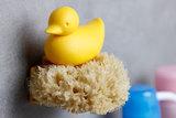 Держатель для губки Duck жёлтый Qualy QL10225-YW | Купить в Москве, СПб и с доставкой по всей России | Интернет магазин www.Kitchen-Devices.ru