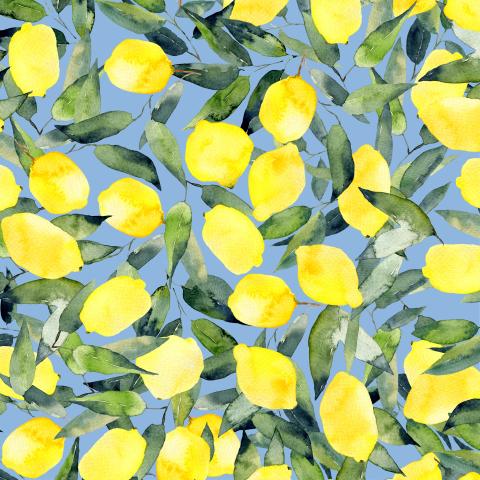 Лимоны на голубом фоне