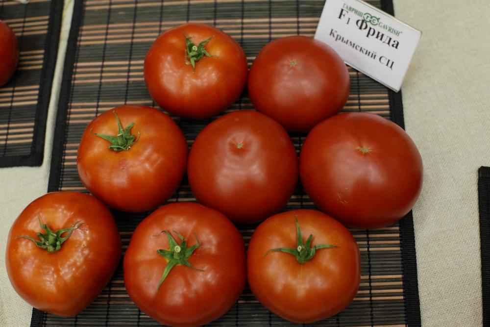 Каталог Фрида F1 семена томата индетерминантного (Гавриш) F1_Фрида_2.jpg