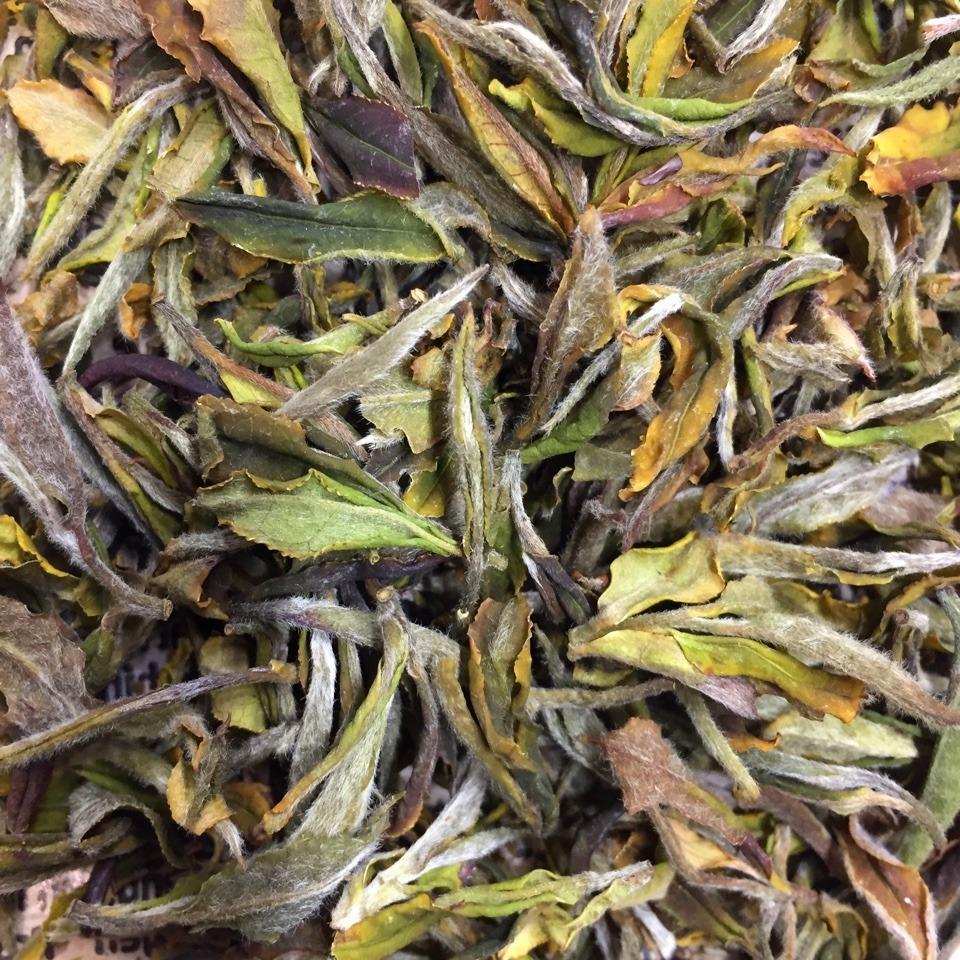 Грузинский дикий белый чай