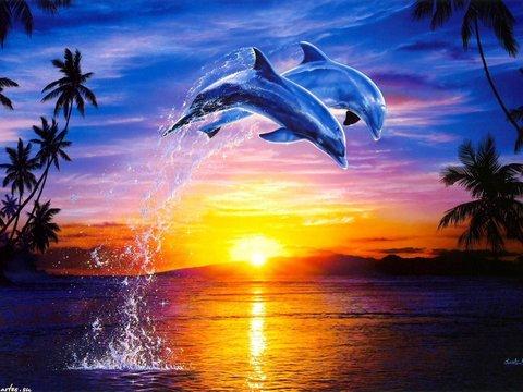 Картина раскраска по номерам 50x65 Прыжок дельфинов над водой