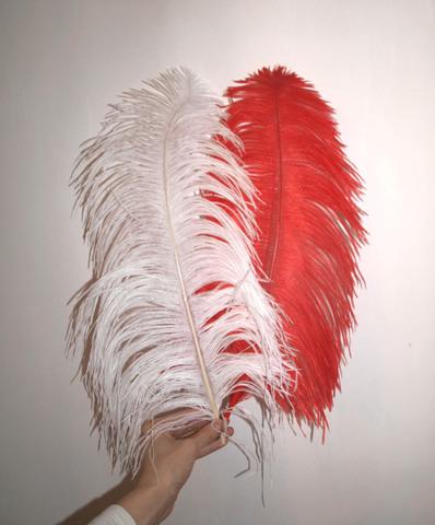 Перья страуса  декоративные  ПРЕМИУМ 50-55 см. (цена за 1 шт.) , (выберите цвет)