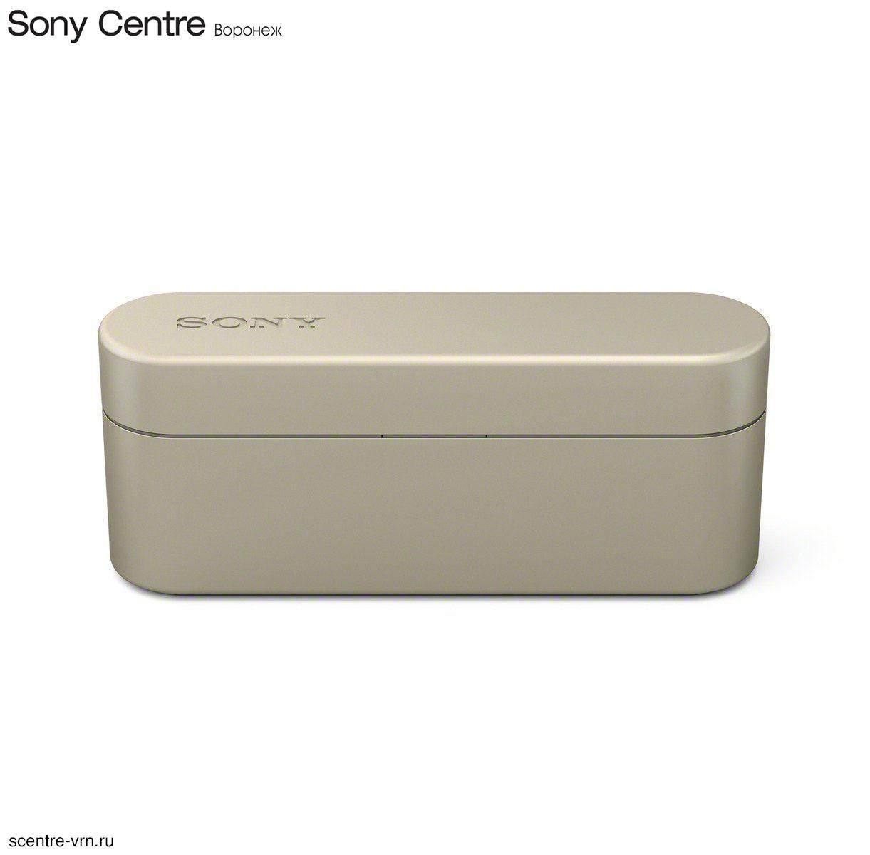 Беспроводные наушники Sony WF-1000XN в зарядном чехле