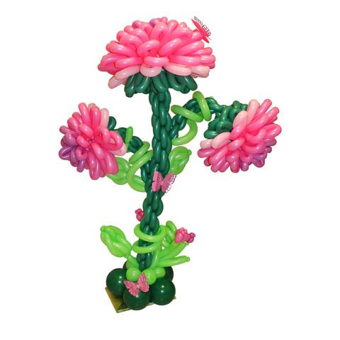 Большой цветок Пионы