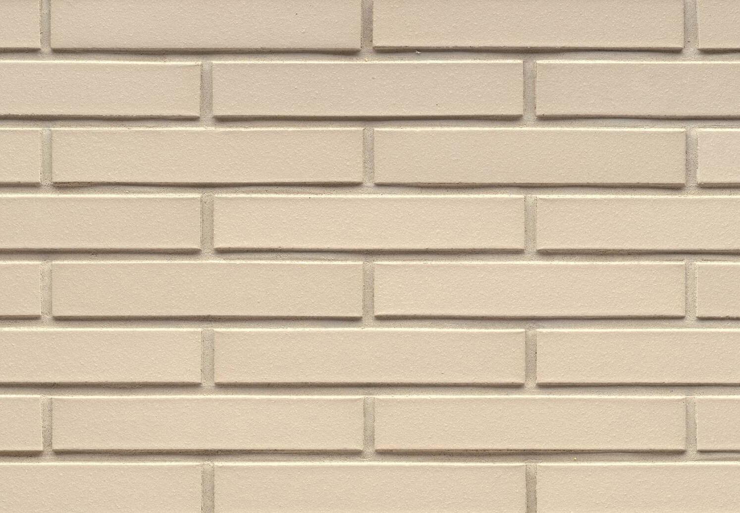 Feldhaus Klinker - R100LDF14, Classic Perla Liso, 290x14x52 - Клинкерная плитка для фасада и внутренней отделки