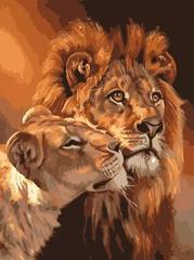 Картина раскраска по номерам 30x40 Нежность животных
