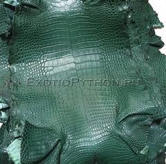 Кожа крокодила SK-39