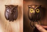 Держатель для ключей - ключница настенная в прихожую сова Night Owl коричневый Qualy QL10195-BN | Купить в Москве, СПб и с доставкой по всей России | Интернет магазин www.Kitchen-Devices.ru