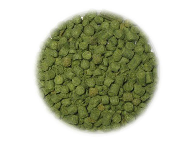 Хмель Хмель Нортен Бревер (Northern Brewer) α-10% 100г 481_P_1444054759390.jpg