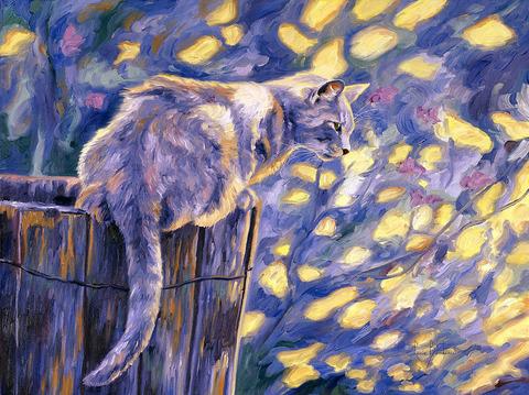 Картина раскраска по номерам 50x65 Котик на заборе