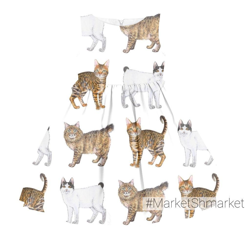 Породистые котики на белом. Purebred cats on white