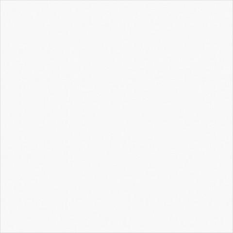 Керамогранит Diamond White 410х410
