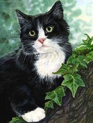 Картина раскраска по номерам 40x50 Черно-белый кот на дереве