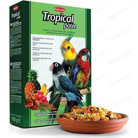 Padovan Tropical Patee комплексный фруктовый корм для средних попугаев