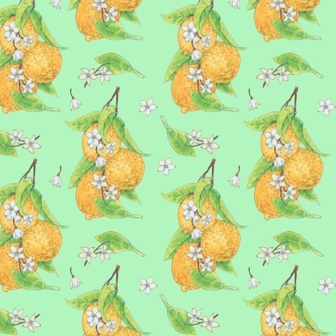 Лимоны на салатовом
