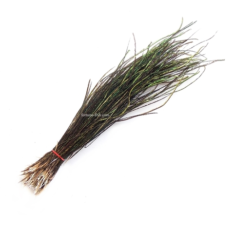 Бородки пера павлина Peacock Herls Natural 5-7