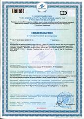 Свидетельство о регистрации Мега Р